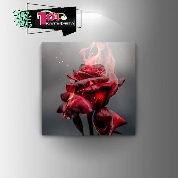 Картина-канава Горяща роза