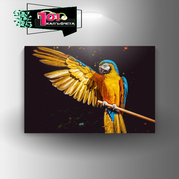 Картина-канава Жълт папагал