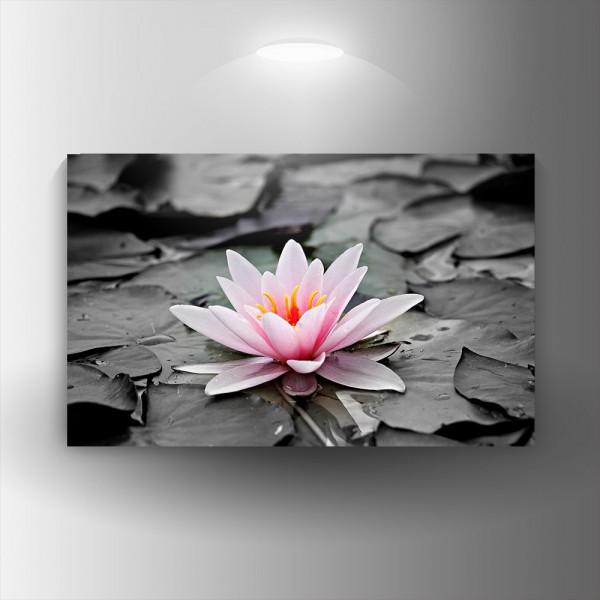 Картина-канава Водна лилия