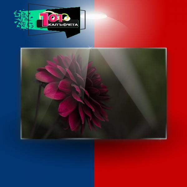 Картина на закалено стъкло Червено цвете