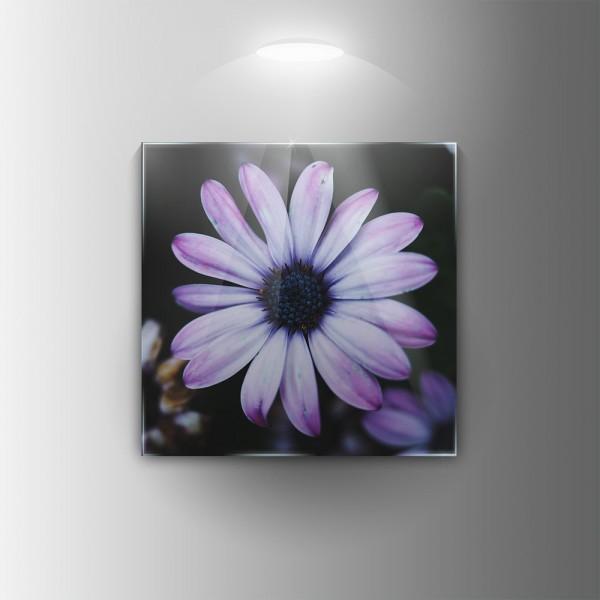 Картина на закалено стъкло Цвете