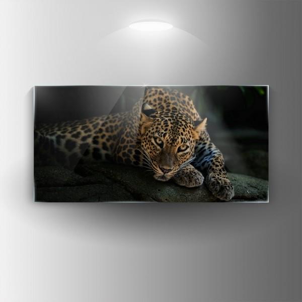 Картина на закалено стъкло Пантера